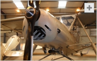 Storch front view photo