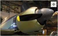 Sea Fury front view photo