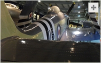 Sea Fury rear view photo